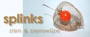 Splinks